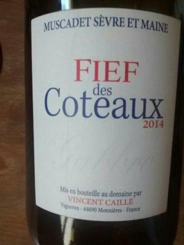 Vincent Caille Fief Des Coteaux Muscadet Sevre Et Maine 2014