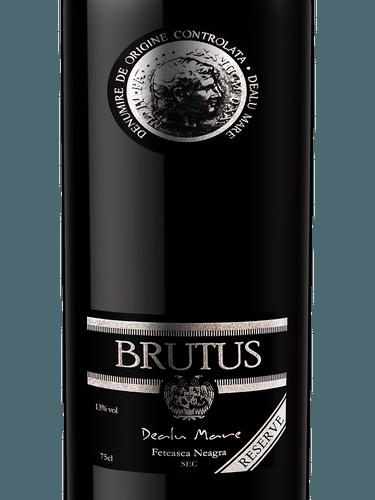 Brutus no 5 summary
