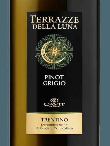 Terrazze della Luna Pinot Grigio | Wine Info